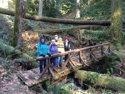 Lincoln Park Seattle Parks Hikes by 2018 First Day Hikes Adventure Awaits Wa
