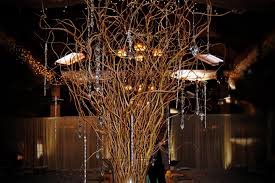 curly willow centerpieces curly willow branches