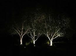 Landscaping Portland Oregon by Outdoor Lighting Landscaping Portland Oregon