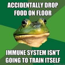 Bachelor Frog Meme - 72 best foul bachelor frog images on pinterest ha ha funny stuff