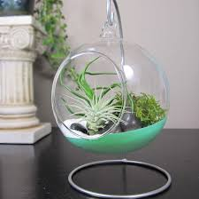 Artificial Tree Home Decor Small Plants For Home Decor Artificial Trees Plants Topiary More