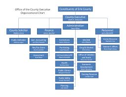 template organizational chart microsoft organization chart template zadluzony