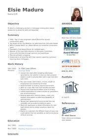 Property Preservation Resume Sample by Loan Officer Resume Samples Visualcv Resume Samples Database