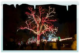 calgary christmas light installation company