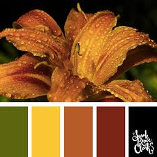 fall color pallette 25 color palettes inspired by the pantone fall 2017 color trends