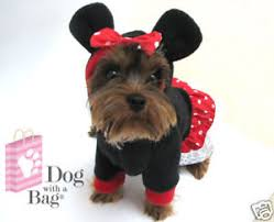 disney minnie mouse dress chihuahua yorkie dog coat fleece