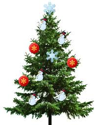 Christmas Decorations Cheap Nz by Christmas Tree Nzmaths