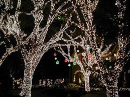 top 4 neighborhoods for lights in dfw