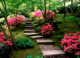 easy care flowers for garden beautiful flower gardens waterfalls