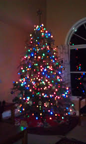 lights rosemary christle throughout colored on tree