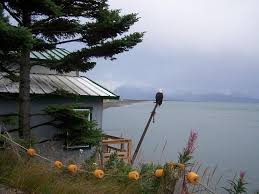 alaska house alaska beach house b u0026b homer ak booking com