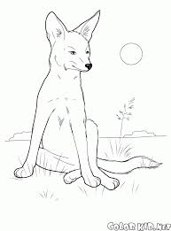 coloring page coyote