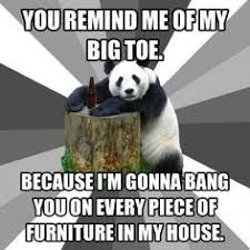 Pick Up Line Panda Meme - hilarious pickup line panda memes how about a date pandas and