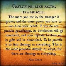 Gratitude Meme - gratitude gratefulness alancohen wisdom inspiration attitude