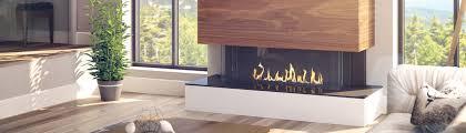 Regency Gas Fireplace Inserts by Regency Fireplace Products Delta Bc Ca V4g 1h4