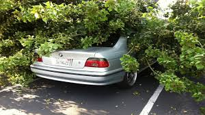 tree falls on 1997 2000 bmw e39 528i 525i 530i 540i m5 youtube