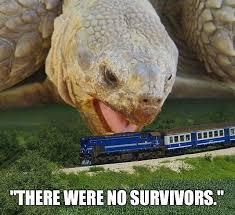 Tortoise Meme - funny giant tortoise try to eating train