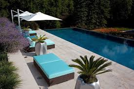 cantilevered furniture pool contemporary with palm trees outdoor