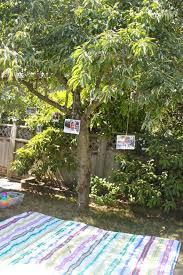 Backyard Birthday Party Ideas 197 Best Owen U0027s 2nd Birthday Party Images On Pinterest Birthday