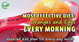 most effective diet oranges and eggs every morning healthier
