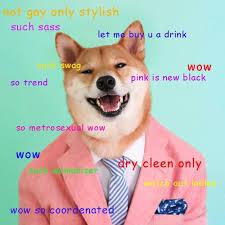 Doge Meme Best - ot wow such doge genius such a wow much cuteness pinterest