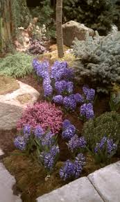 best backyard landscaping ideas and designs in a waterfall of