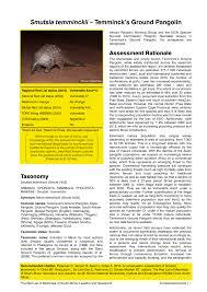 anecdotal aardvark a conservation assessment of smutsia temminckii pdf download