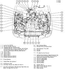 2001 4runner engine diagram 2001 wiring diagrams instruction