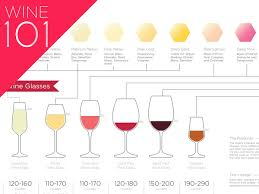 wine for beginners infographic wine folly