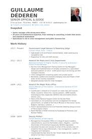 Examples Of Government Resumes by Judge Resume Samples Visualcv Resume Samples Database