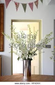 Display Vase Silver Vase Stock Photos U0026 Silver Vase Stock Images Alamy