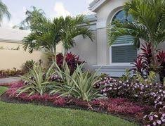 low maintenance landscaping for south florida florida