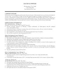 resume summary statements sles gallery of 10 how to write an amazing resume professional summary