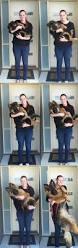 belgian malinois puppies 6 months best 25 german shepherd training ideas on pinterest food for