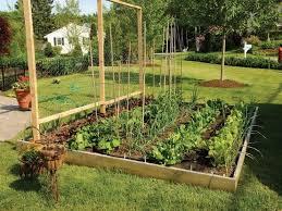 Best Vegetable Garden Layout by Backyard Vegetable Garden Design