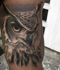 Owl Shoulder - 51 owl tattoos ideas best designs with meaning