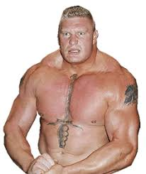 collection of 25 brock lesnar with portrait on chest