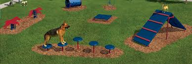 Dog Backyard Playground by Playground Shade And Surfacing Depot Provider Of Outdoor