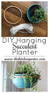 diy hanging succulent planter the kitchen garten