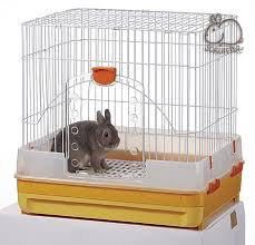 Rabbit Hutches For Indoors Is A U201chouse Rabbit U201d For You Live Pant Play