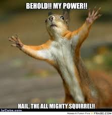 Dramatic Squirrel Meme - dramatic squirrel meme archives picsmine