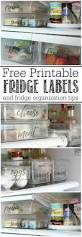 best 25 refrigerator organization ideas on pinterest house