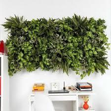 vertical garden kits living wall indoor green wall u2013 garden beet
