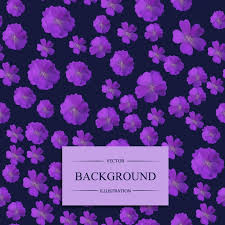 fiori viola sfondo di pattern di fiori viola scaricare vettori gratis