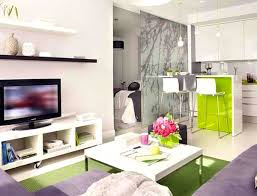 apartments handsome apartment personable small interior design