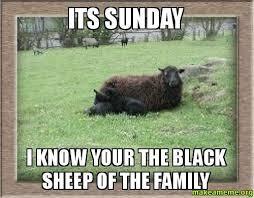 Funny Sunday Memes - 24 hilarious sunday memes and images freshmorningquotes