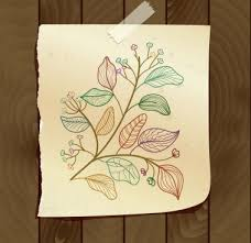 flower vine drawings free vector download 97 516 free vector for