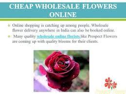 Wholesale Flowers Online September Birth Flower Prospect Flowers Video Dailymotion