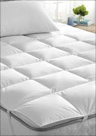 bedroom marvelous bed bug mattress cover amazon mattress pad vs
