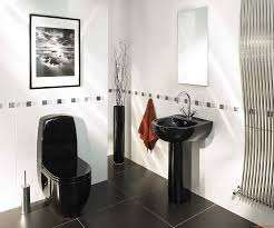 Black And White Bathroom Design Ideas Colors 155 Best Bathroom Images On Pinterest Contemporary Bathrooms